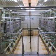 Оборудование доильное фото