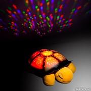 Ночник-проектор Музыкальная черепаха фото