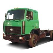 Шасси грузовых автомобилей - МАЗ 5336 фото