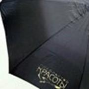 Печать на зонтах: шелкотрафарет, термоперенос, сублимация фото