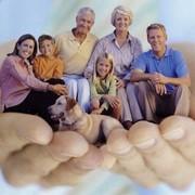 Добровольное страхование гражданской ответственности выбрать группу услуг фото