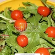 Салаты овощные фото