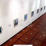 Проведение выставок фото