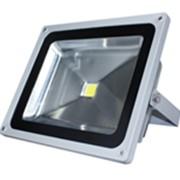 Прожектор светодиодный 1LEDх10W фото