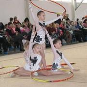Костюмы для художественной гимнастики фото