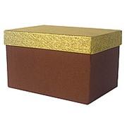 Коробка Прямоугольник 19,5*13*5*12см фото