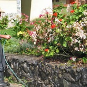Уход, обслуживание садов фото