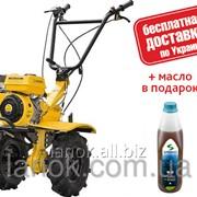 Мотоблок бензиновый Sadko M-900PRO фото