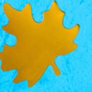 Конфетти: Кленовый лист (d 4,5 см), цвет золотистый фото
