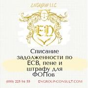 Бухгалтерские услуги для ФОП, списание ЕСВ, пени фото