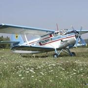 Работы по техническому обслуживанию самолет Ан-2 фото