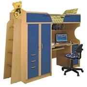 Мебель детская Приют-Люкс фото