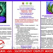 Плакат Профилактика наркомании фото