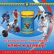 Продукт Бук. Кедровая сила Спортивная 9781 фото