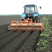 Фермерское хозяйство действующее продам. Херсонская область фото