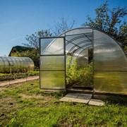 Теплица урожай ПК 6м фото