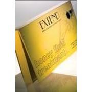 """HONEY FLUID TREATMENT / Хани флюид тритмент 10 шт х 12 мл (медовые ампулы для волос """"для блеска и в сочетание с краской"""") фото"""