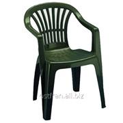 Кресло Altea зеленое фото