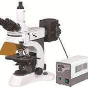 Микроскоп бинокулярный для люминесцентной микроскопии BS – 7000А фото