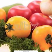 Оптовая торговля сельскохозяйственной продукцией фото