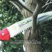 Обрезка деревьев и кустарников фото
