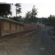 Куплю продам землю в Гореничах, Киево-Святошинский район фото