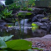 Устройство водоемов. Водная архитектура фото