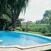 Домашние бассейны фото