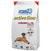 Корм для собак Forza 10 Condro L/XL Active 10 кг фото