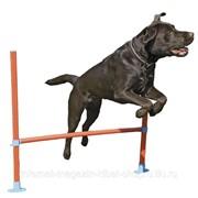Аджилити для собак средних и крупных пород Барьер, оранжевый, 30-80см ROSEWOOD фото