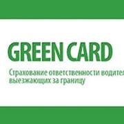 Зеленая карта, страховка, купить зеленую карту, карта зеленый коридор, полис зеленая карта. фото