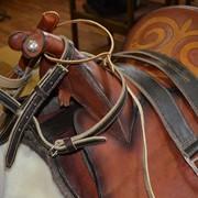 Амуниция конная фото