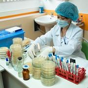 Обследование в лаборатории Invivo фото