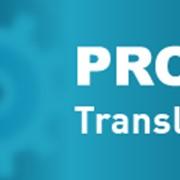 PROMT Translation Server 10 Нефть и Газ Enterprise, а-р-а, одна лиц. (Компания ПРОМТ) фото