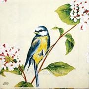 Салфетка для декупажа Ранняя пташка мини фото