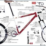 Ремонт вело - мото техники фото