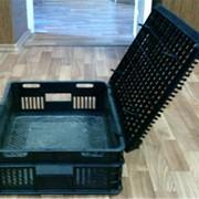 Ящики для перевозки птицы, кроликов, поросят фото