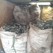 Утилизация использованной тары и упаковки. фото