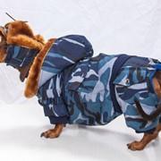 Зимний охотничий комбинезон + шапка в подарок фото