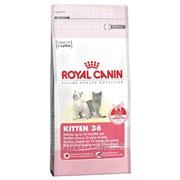 Сухой корм для котят (подходит для хорьков) Royal Canin Kitten 36 - 2 кг фото