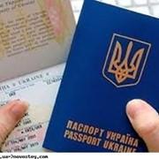 Трудоустройство гражданам Украины фото