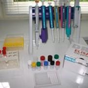 Анализы лабораторные иммуноферментные фото