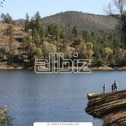 Рыбный промысел Каховское водохранилище , р. Днепр фото