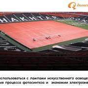 Ремонт газона футбольных полей после окончания игрового сезона, тяжелой игры фото