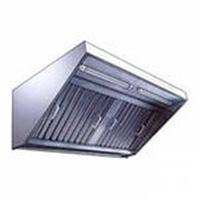 Зонт вентиляционный ЗВЭ-900-1.5-П фото