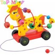 Детская игрушка каталка фото