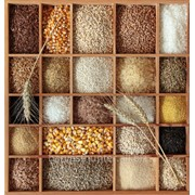EXPORT: GRAIN, DERIVATIVES, OIL SEEDS AND PULSES FROM BLACK SEA REGION.FOB/CIF фото
