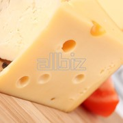 Сир твердый Oltermanni17 фото