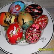 Писанка (расписное яйцо) Донецк фото