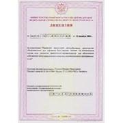 Лицензия на пассажирские перевозки фото